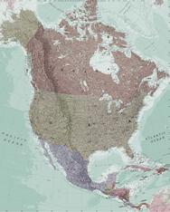 Executive North America Political